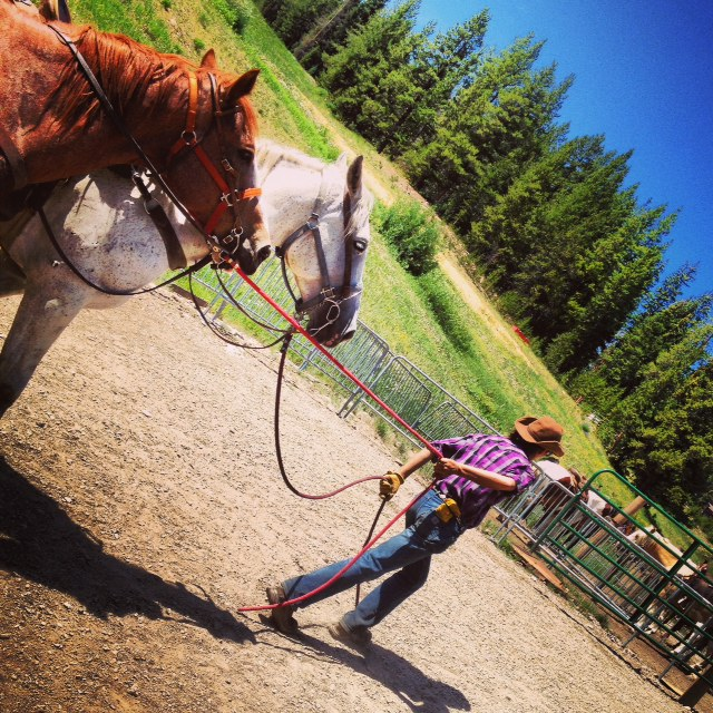 Horseback trail rides at Copper Mountain
