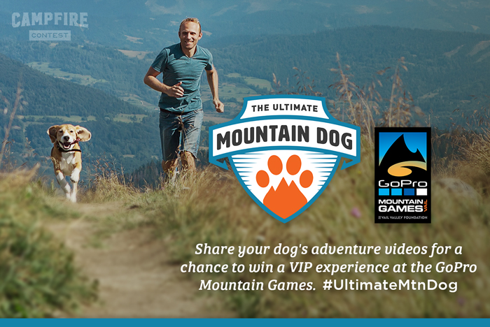Mountain dog contest