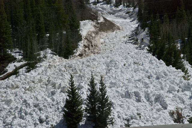 wet snow avalanche Colorado
